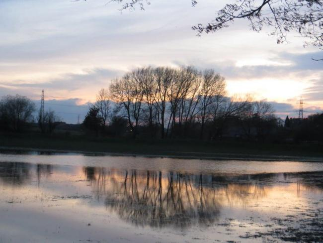 JohnWeightman took this photo at sunset by the River Bollin just outside Dunham Park.