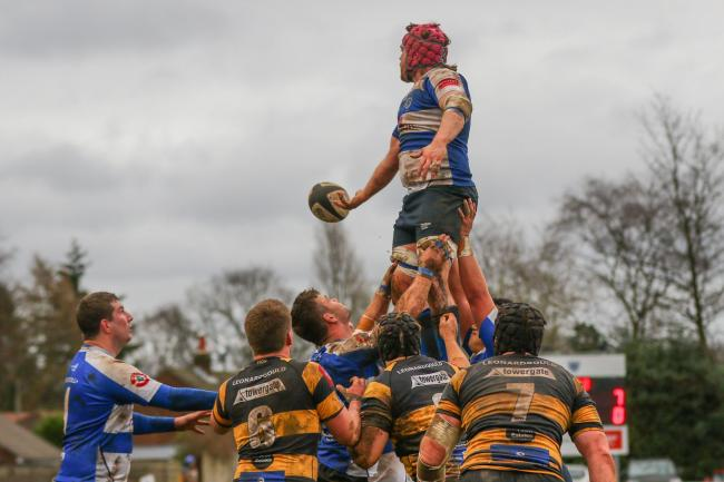 Jake Barron wins a lineout for Sale FC in their National League One victory against Canterbury. Picture: Gareth Lyon