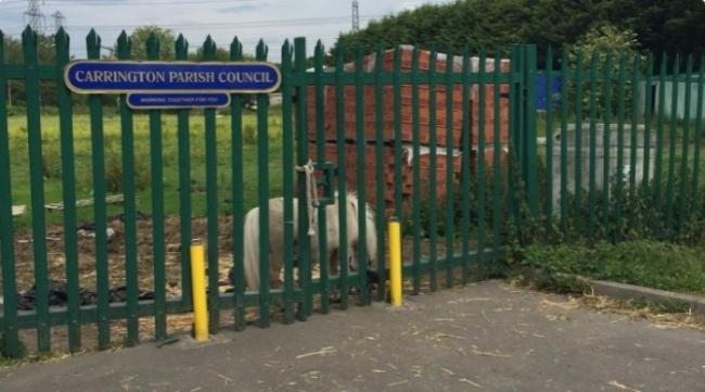 Carrington Parish Council owns the Carrington recreation fields off Manchester Road [image by Google Street View]