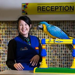 Messenger Newspapers: Charlie the parrot chats with receptionist Amber Dixon at the Legoland Windsor Resort Hotel in Berkshire.