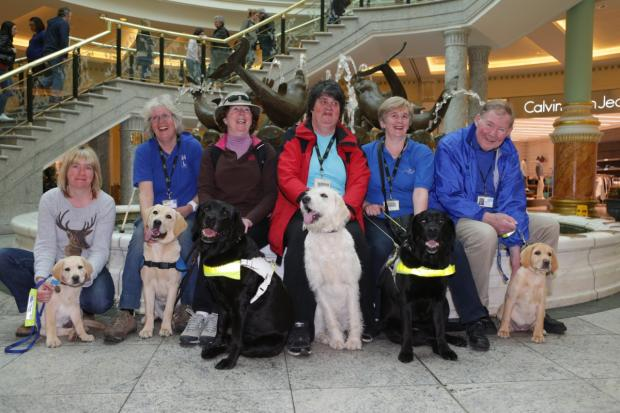 Carolyne Jones and guide dog puppy Mario, Jacquie Wilson with guide dog puppy Jazz, Mary Leigh with guide dog Caryn, Barbara Searing with guide dog puppy Jumble, Christine Clare with guide dog Libby and Chris Howes with guide dog puppy Rosie