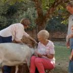 Messenger Newspapers: Fans chuckle at Mary Berry's bid to milk a goat