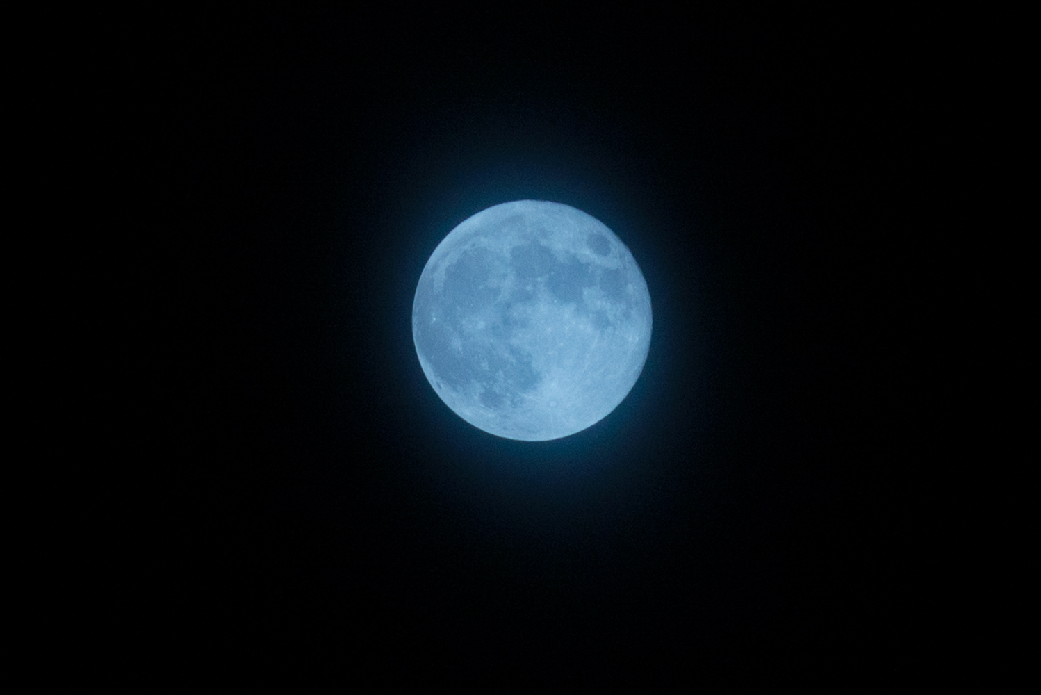 Blue Moon in Sale. Picture: Alan Homersham