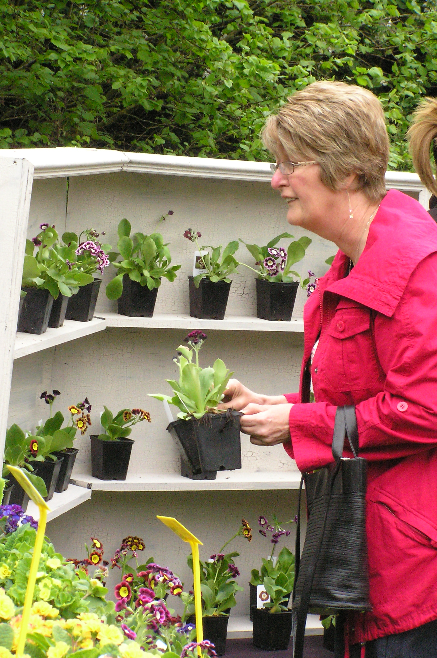 Plant Hunters' Fair at The Dorothy Clive Garden on Easter Sunday & Monday