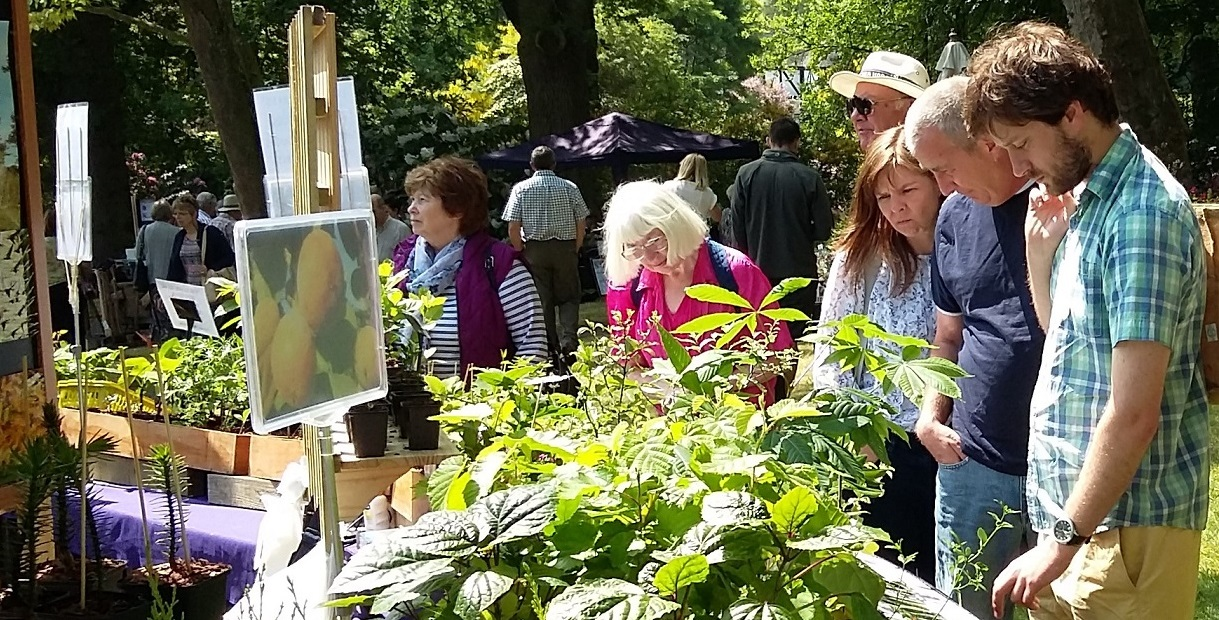 Plant Fair at Ness Botanic Gardens, Cheshire on Sunday 1st September